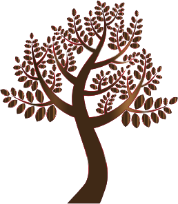 https://openclipart.org/image/300px/svg_to_png/234877/Simple-Prismatic-Tree-7-Without-Background.png