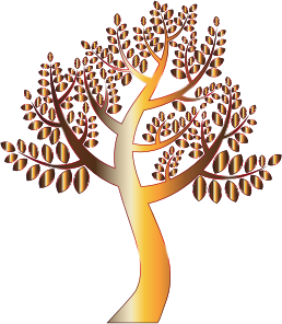 https://openclipart.org/image/300px/svg_to_png/234879/Simple-Prismatic-Tree-8-Without-Background.png