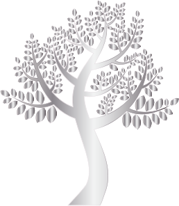 https://openclipart.org/image/300px/svg_to_png/234883/Simple-Silver-Tree-Without-Background.png