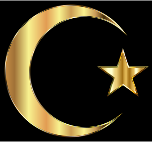 https://openclipart.org/image/300px/svg_to_png/235098/Golden-Crescent-Moon-And-Star.png