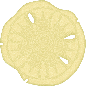 https://openclipart.org/image/300px/svg_to_png/235238/Sand-Dollar--Arvin61r58.png