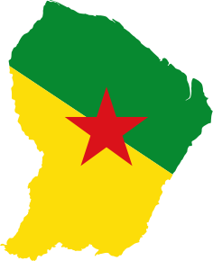 https://openclipart.org/image/300px/svg_to_png/235794/French-Guiana-Map-Flag.png