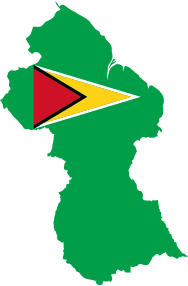 https://openclipart.org/image/300px/svg_to_png/235795/Guyana-Map-Flag.png