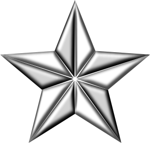 https://openclipart.org/image/300px/svg_to_png/236489/3DSegmentedStarSilver.png