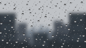 https://openclipart.org/image/300px/svg_to_png/237824/rainOnWindow.png