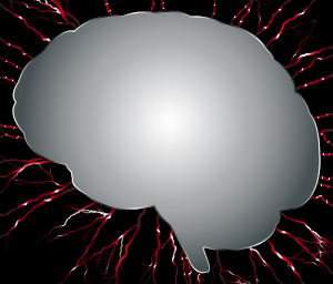 https://openclipart.org/image/300px/svg_to_png/238393/Brain-Storm.png