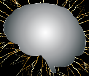 https://openclipart.org/image/300px/svg_to_png/238395/Brain-Storm-3.png