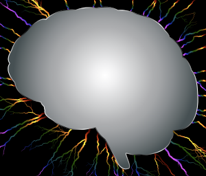 https://openclipart.org/image/300px/svg_to_png/238398/Brain-Storm-6.png