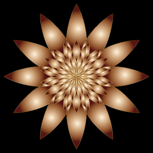 https://openclipart.org/image/300px/svg_to_png/239098/Chromatic-Flower-10.png