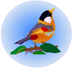 https://openclipart.org/image/300px/svg_to_png/239983/passaro-multicolor-up.png