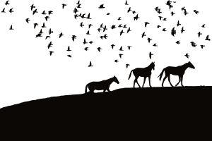 https://openclipart.org/image/300px/svg_to_png/241504/Birds-And-Horses-Silhouette.png