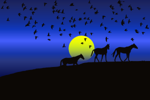 https://openclipart.org/image/300px/svg_to_png/241505/Birds-And-Horses-Silhouette-Sunset.png