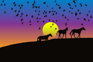 https://openclipart.org/image/300px/svg_to_png/241506/Birds-And-Horses-Silhouette-Sunset-2.png