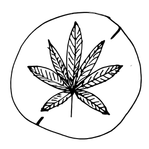 https://openclipart.org/image/300px/svg_to_png/241915/No-Marijuana-Sign-2016022224.png