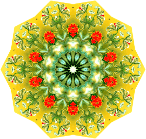 https://openclipart.org/image/300px/svg_to_png/242448/Orchidae4.png
