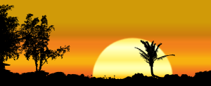 https://openclipart.org/image/300px/svg_to_png/242955/Maui-Sunset.png