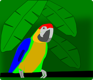https://openclipart.org/image/300px/svg_to_png/243327/parrot.png