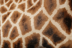 https://openclipart.org/image/300px/svg_to_png/243362/GiraffeFur.png