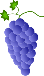 https://openclipart.org/image/300px/svg_to_png/244886/Fwd-Colored-Grapes-2016032519.png