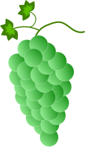 https://openclipart.org/image/300px/svg_to_png/244888/Fwd-Colored-Grapes-2-2016032519.png