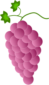 https://openclipart.org/image/300px/svg_to_png/244890/Fwd-Colored-Grapes-4-2016032519.png