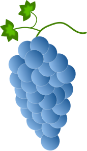 https://openclipart.org/image/300px/svg_to_png/244892/Fwd-Colored-Grapes-6-2016032519.png