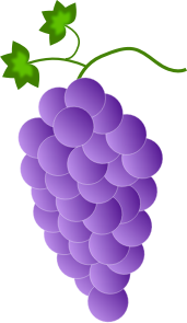 https://openclipart.org/image/300px/svg_to_png/244893/Fwd-Colored-Grapes-7-2016032519.png