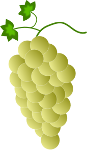 https://openclipart.org/image/300px/svg_to_png/244894/Fwd-Colored-Grapes-8-2016032519.png