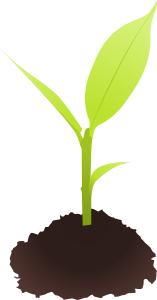 https://openclipart.org/image/300px/svg_to_png/245780/cyberscooty-small_plant.png