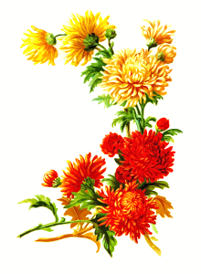https://openclipart.org/image/300px/svg_to_png/246786/Flowers3.png