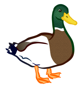 https://openclipart.org/image/300px/svg_to_png/248173/Ente-coloured.png