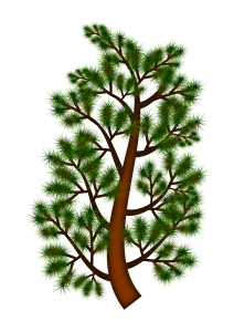 https://openclipart.org/image/300px/svg_to_png/248224/pine_tree_branch_06052016_1.png