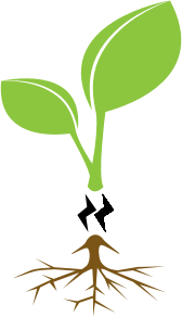 https://openclipart.org/image/300px/svg_to_png/248329/kluit-web.png