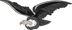 https://openclipart.org/image/300px/svg_to_png/248637/Condor.png