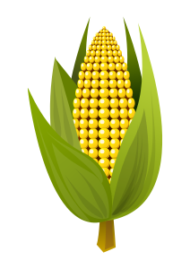 https://openclipart.org/image/300px/svg_to_png/248688/corn_cob.png