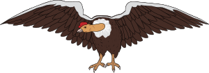 https://openclipart.org/image/300px/svg_to_png/248705/Condor3.png