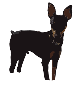 https://openclipart.org/image/300px/svg_to_png/248949/MinPin-Puppy-2016052128.png