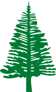 https://openclipart.org/image/300px/svg_to_png/252962/NorfolkIslandPine.png