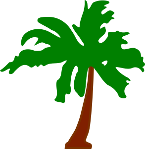 https://openclipart.org/image/300px/svg_to_png/252963/PalmTree5.png