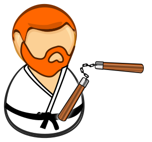 https://openclipart.org/image/300px/svg_to_png/254906/nunchuck_norris.png