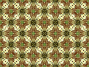 https://openclipart.org/image/300px/svg_to_png/258030/BackgroundPattern133.png
