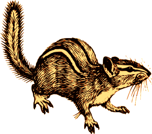 https://openclipart.org/image/300px/svg_to_png/260451/Chipmunk.png