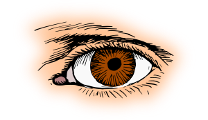 https://openclipart.org/image/300px/svg_to_png/261918/EyeBrown.png