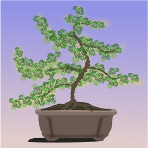 https://openclipart.org/image/300px/svg_to_png/262216/bonsai-08.png