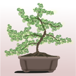 https://openclipart.org/image/300px/svg_to_png/262217/bonsai-09.png
