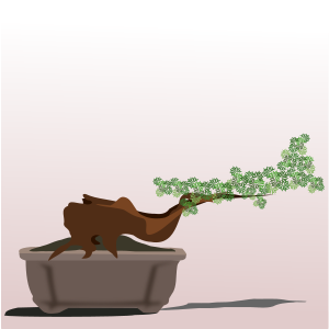 https://openclipart.org/image/300px/svg_to_png/262267/bonsai-10.png