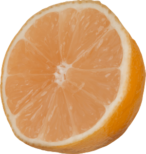 https://openclipart.org/image/300px/svg_to_png/263547/CutOrange.png