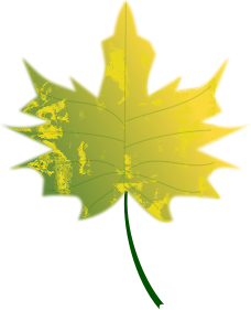 https://openclipart.org/image/300px/svg_to_png/263733/Autumn-Leaf6-Arvin61r58.png
