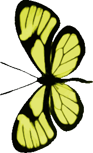 https://openclipart.org/image/300px/svg_to_png/263747/Butterfly11.png