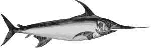 https://openclipart.org/image/300px/svg_to_png/264009/Swordfish2.png